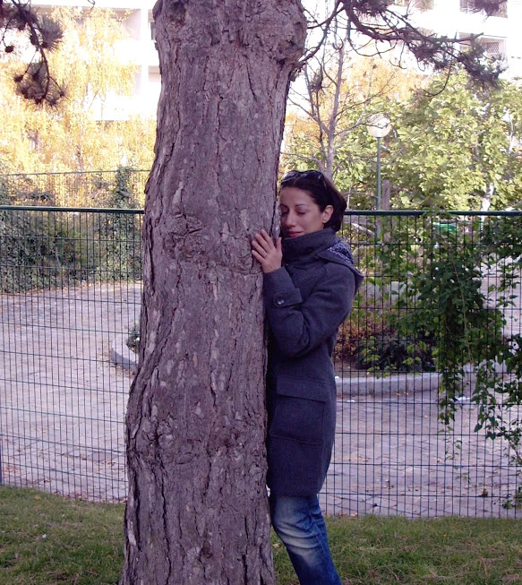 abbracciavo un pino parigino