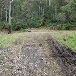 Muddy service trail (60977)