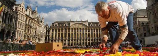 Bruselas Valonia: hombre preparando alfombra floral
