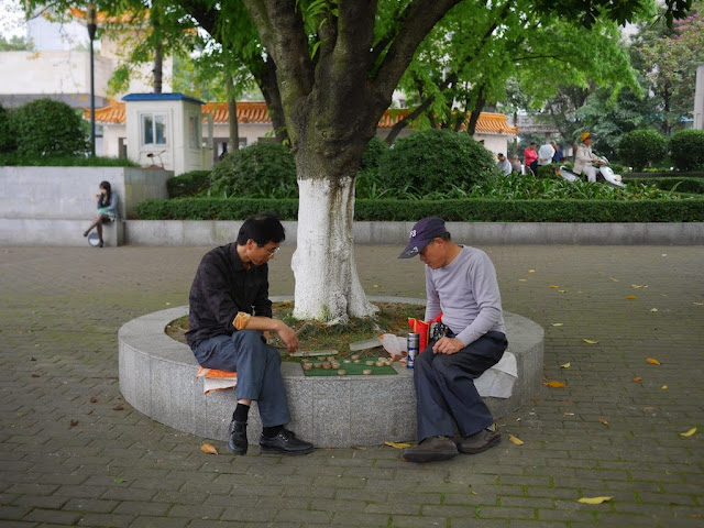 two men playing xiangqi (Chinese chess) next to a tree