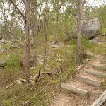 Well maintained track with timber steps among the granite boulders (413321)