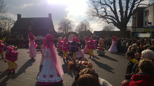 Carnavalsoptocht 2014 in Overloon foto Arno Wouters  (20).jpg