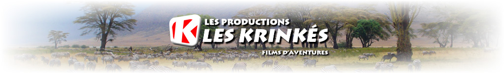 SERENGETI 2008 un paradis d'Afrique (le film)