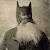 batman rus54