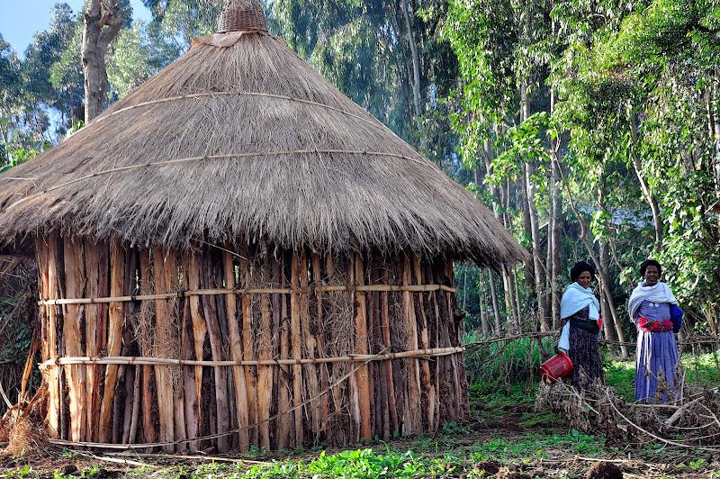 ETIOPIA NORTE: ABISINIA. IGLESIAS RUPESTRES. NILO. CIUDADES ...