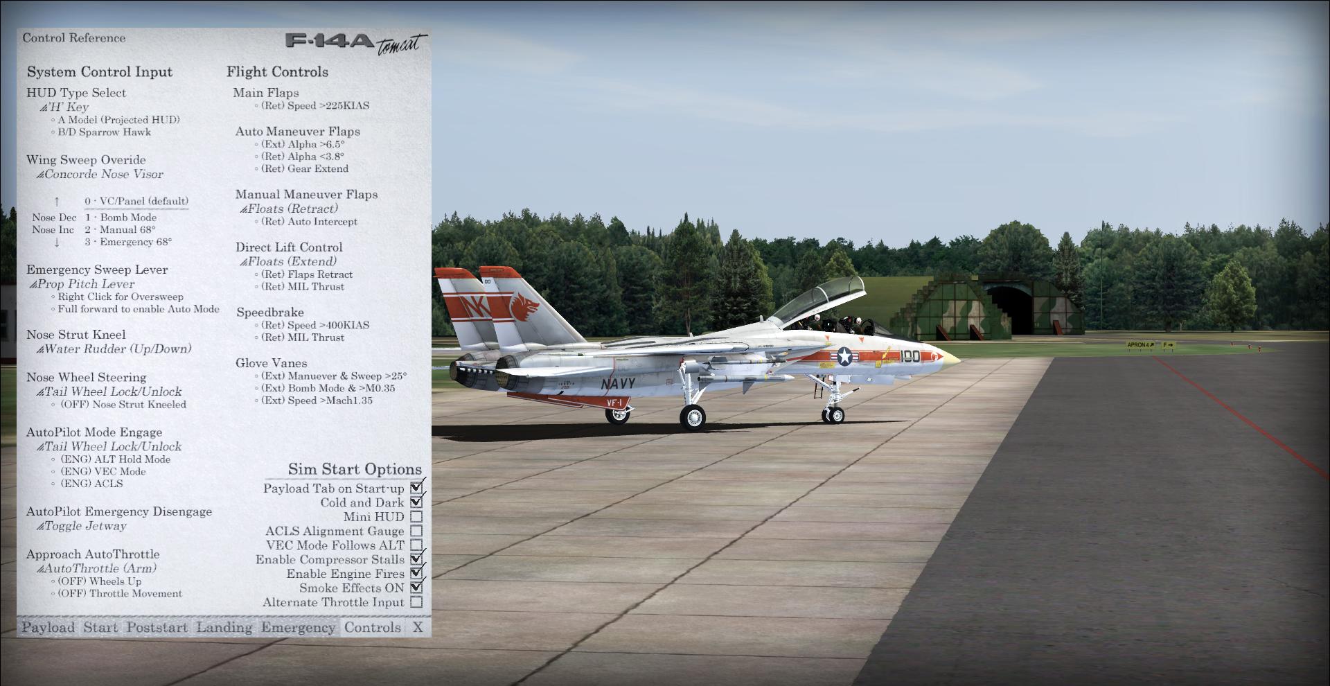 Aerosoft F-14 X - review (6*) - startup and flight • C-Aviation