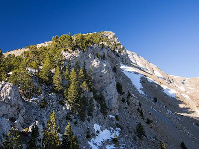 Trobem la carena acinglerada del Puig Terrers i l'anirem resseguint, amb trams sense camí