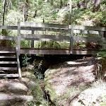 Maitland Bay Track bridge (20513)