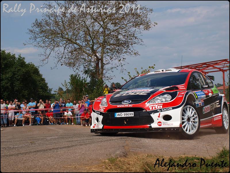 Rally Principe de Asturias P9102377