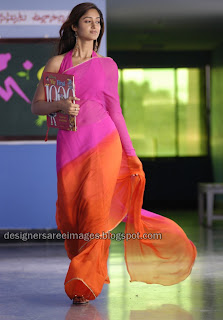 Telugu Actress Ileana in dual color silk saree