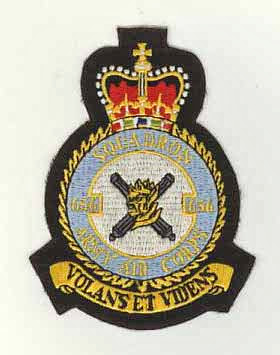 AAC 656 sqn black.JPG