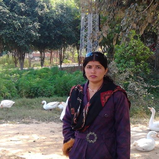 Anju Tiwari Photo 7