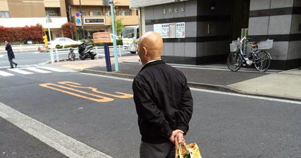 Worlds Most Patient Pet Owner Walks His Giant Tortoise Through - Man walks pet tortoise through tokyo