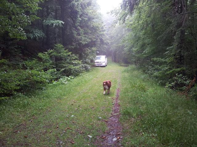 Gerardmer dans les Vosges 20120714_111926