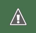 cruce Cine votează în România ?