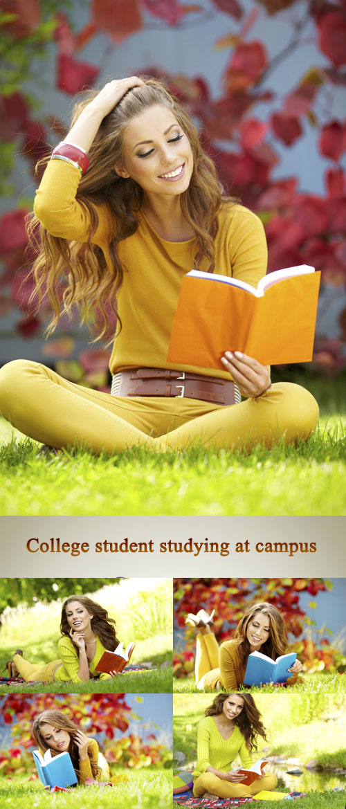 Stock Photo:College student studying at campus