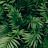 Rushil Grover avatar image