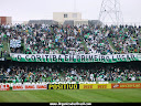 MANCHA VERDE DO CORITIBA