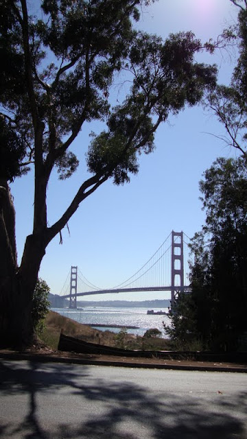 golden gate single parent dating site My argument starts with suicide about every two weeks, someone jumps off golden gate bridge it's less than one in a million people, but it's enough.