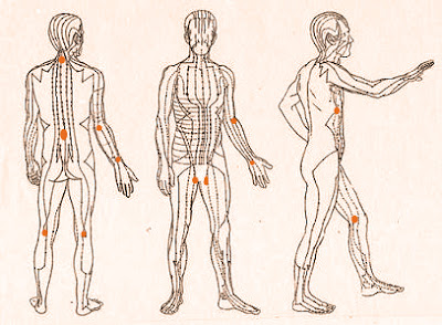 A line drawing of bodies in various positions showing chi meridians; there are orange dots on several of the lines