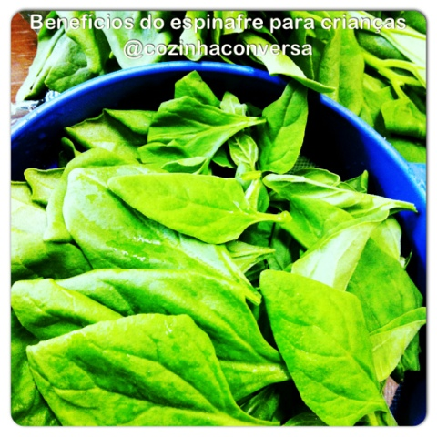 espinafre, vegetais ricos em vitaminas,  alimentação cotidiana, alimentação infantil, alimentação saudável, espinafre refogafo, benefícios do espinafre, crianças e espinafre,