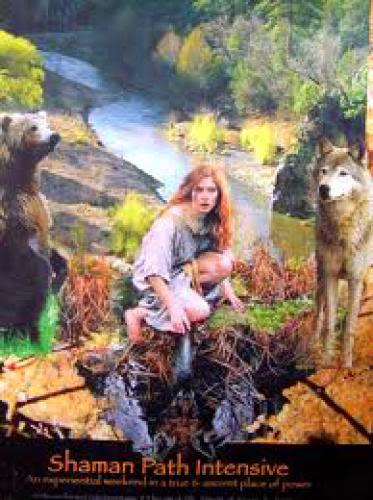 Norse Shaman Journey