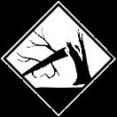 NE_Tree_Down_256