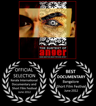 ¬ród³a gniewu / The Subtext of Anger (2011)  PL.DVBRip.XviD / Lektor PL
