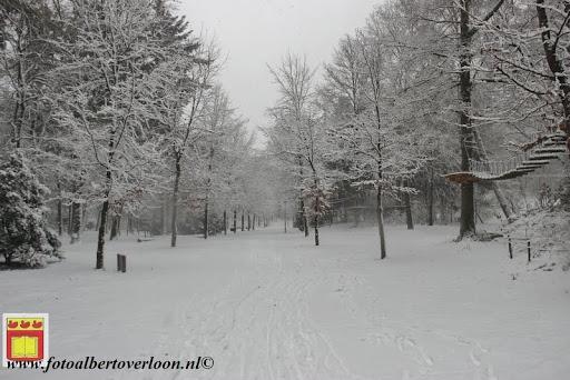 eerste sneeuwval in overloon 07-12-2012  (15).JPG