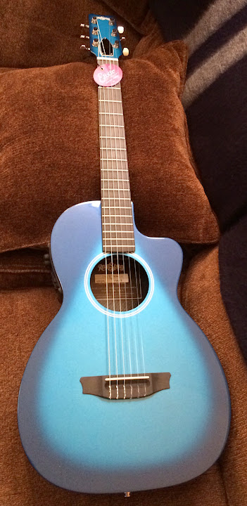 New Classical Parlor From Rainsong The Acoustic Guitar Forum