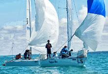 J/24s sailing Mallory Trophy- US Adult Championship