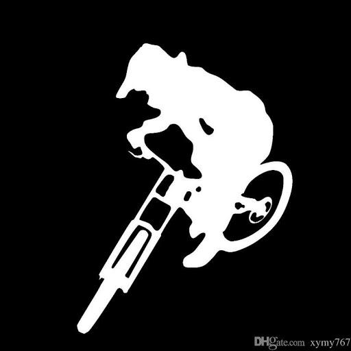 Anon Rider