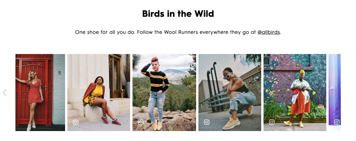 Allbirds Influencers (DTC Growth)