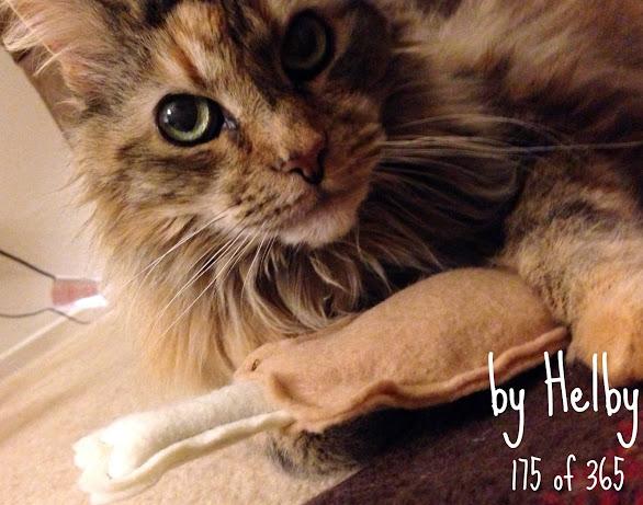 Cat toy drumstick