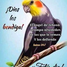 Juan Arauz Photo 20