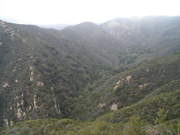 some of Cold Spring as it climbs