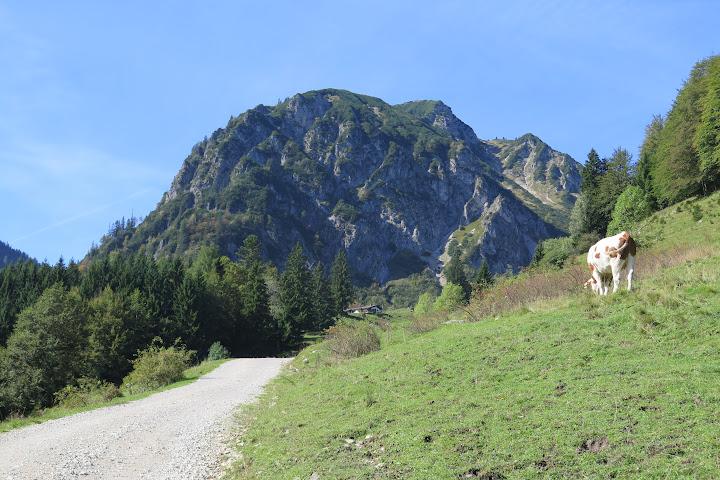 Blick auf den Breitenstein
