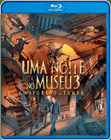 Baixar Filme Uma Noite no Museu 3 BluRay Dublado Torrent