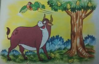 El loro y el toro