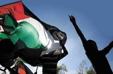 palestina y la onu (29 nov)