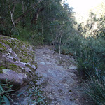 Track below Martins Lookout (74328)