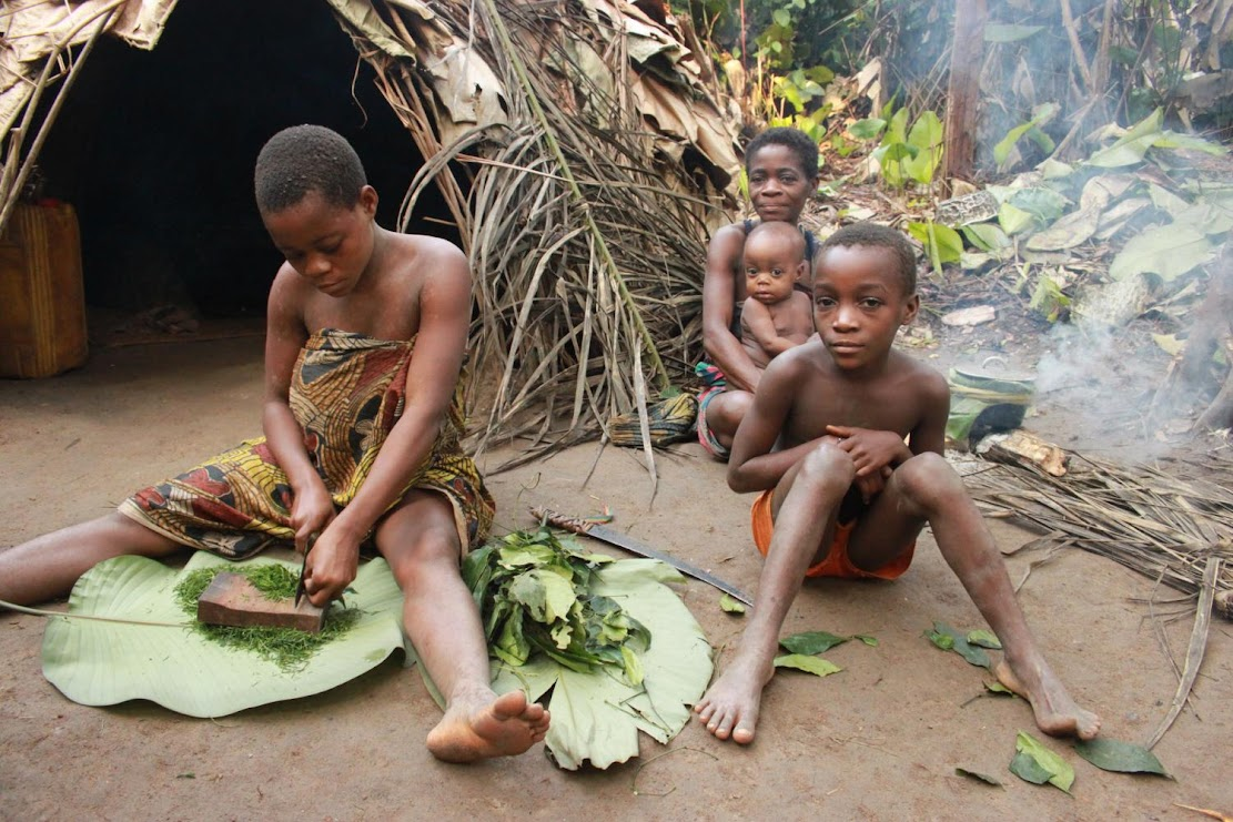Indigenous Cultures: Tracing the path of pygmies' shared knowledge of medicinal plants