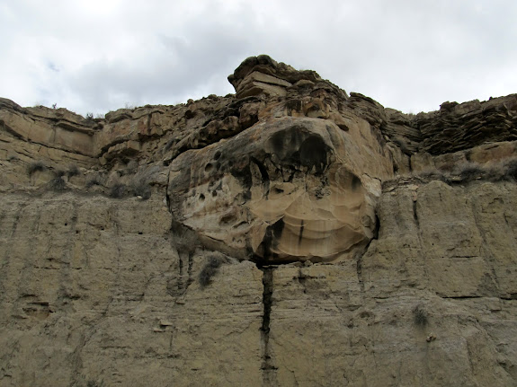 80,000,000 year old sandstone covered by 10,000 year old ice age sediments