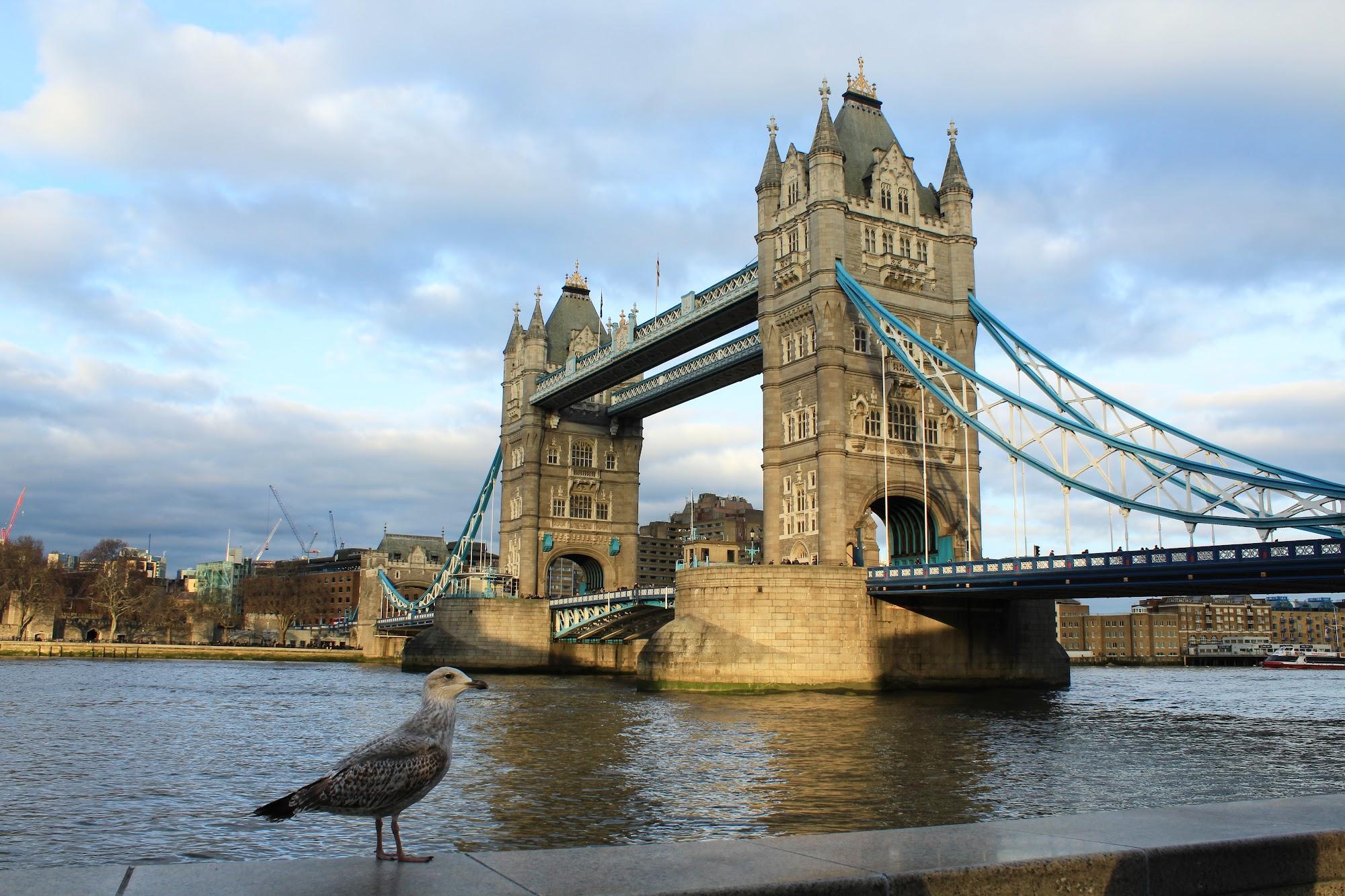 Reisinformatie Verenigd Koninkrijk