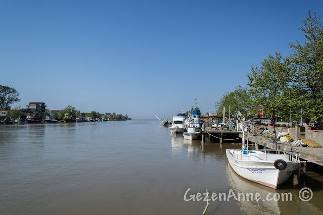 Sakarya, Karasu, Yenimahalle, Sakarya Nehri'nin denize döküldüğü yer