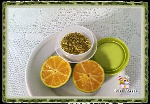 Raspas de casca de limão 1