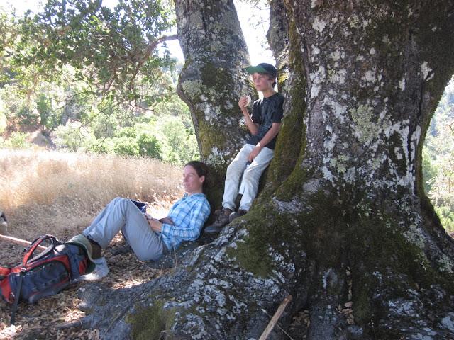 Lunch on upper Gilliam Creek Trail