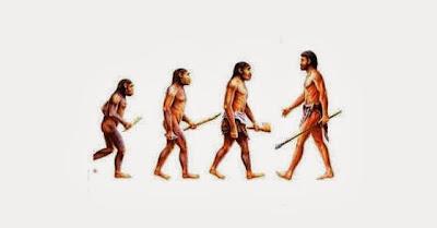 A evolução do Ser Humano... Português-político...