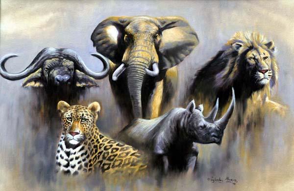 afrika safari big 5. Black Bedroom Furniture Sets. Home Design Ideas