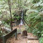 Lila Falls (93250)